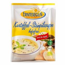 Erntesegen Kartoffel-Steinpilzsuppe hefefrei 45g