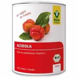 Raab Vitalfood Bio Acerola Pulver 100g
